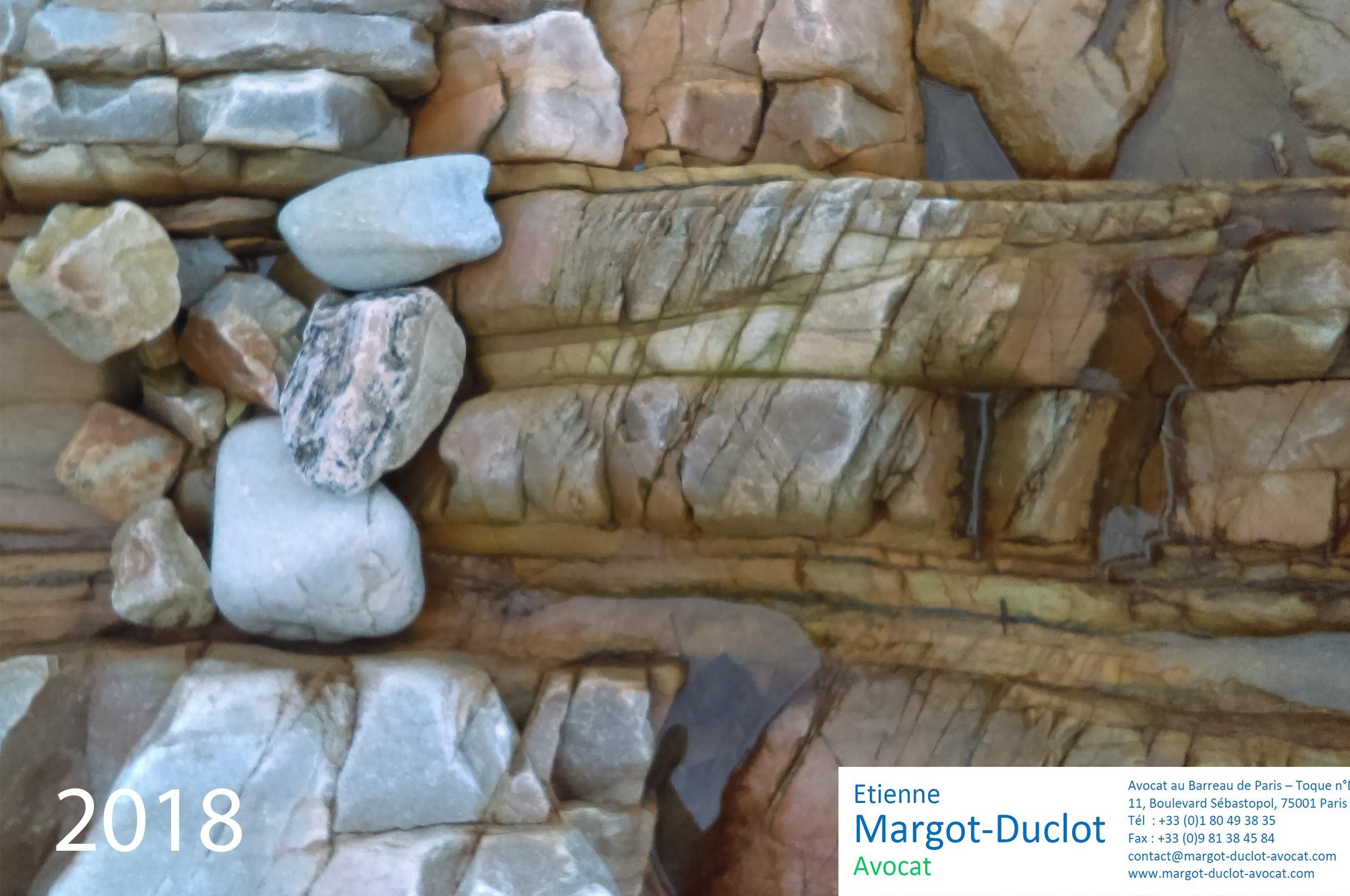 Voeux 2018 Margot-Duclot Avocat